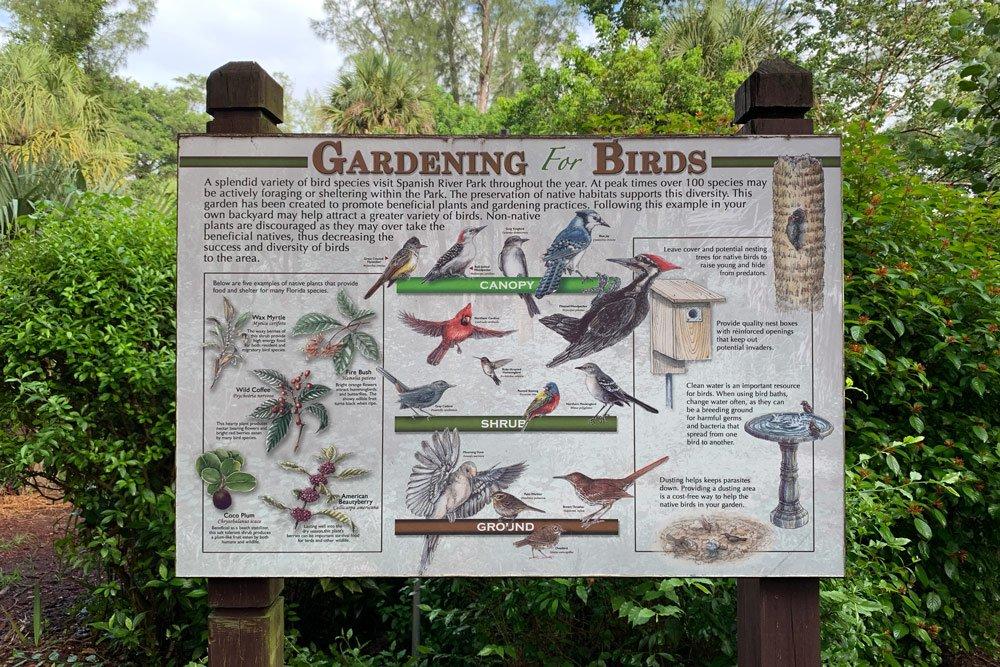 gardening for birds info